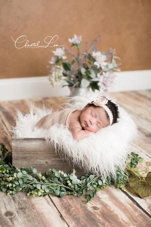 Abriella Newborn