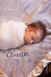Charlie9_logo.jpg
