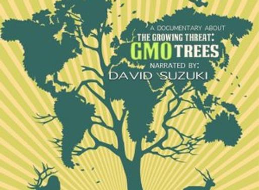 A Silent Forest, David Suzuki