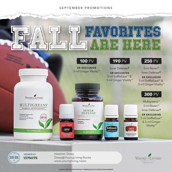 YL Fall Favorites Promo