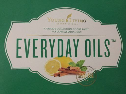 Every Day Oils Collection – The Perfect Fit