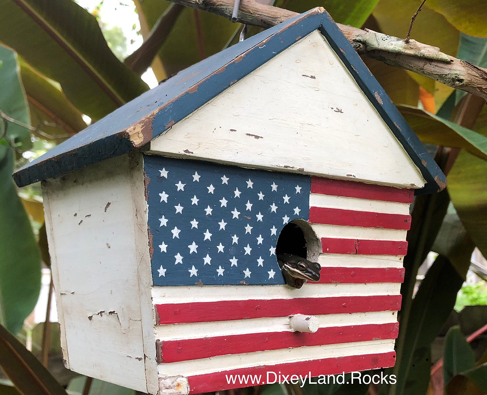 4th July Frog Flag birdhouse