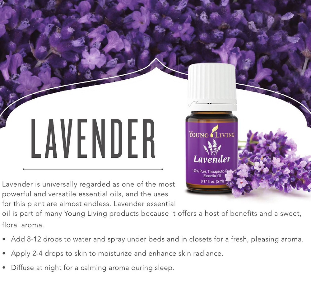 Young Living Essential Oil Lavender