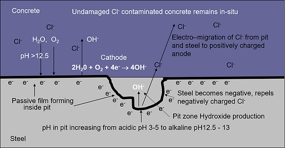 Effects of Cathodic Protection on Chlori