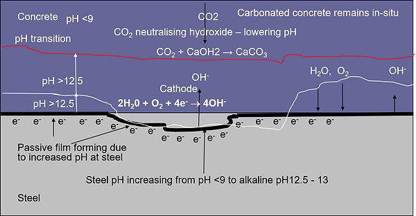 Effects of Cathodic Protection on Carbon
