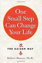 The Kaizen Way