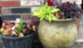 FlowerPots.jpg