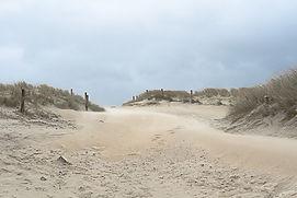 2198 dunes.jpg