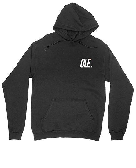 WW degrade hoodie