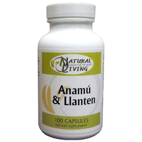 Anamú y Llantén (Caja x 24)
