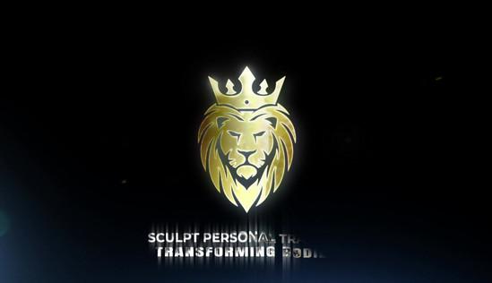 TransformerSculptLogo.mp4