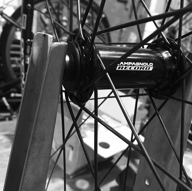 One of my fav combos. Record hubs on open pro rims with Dt comp spokes