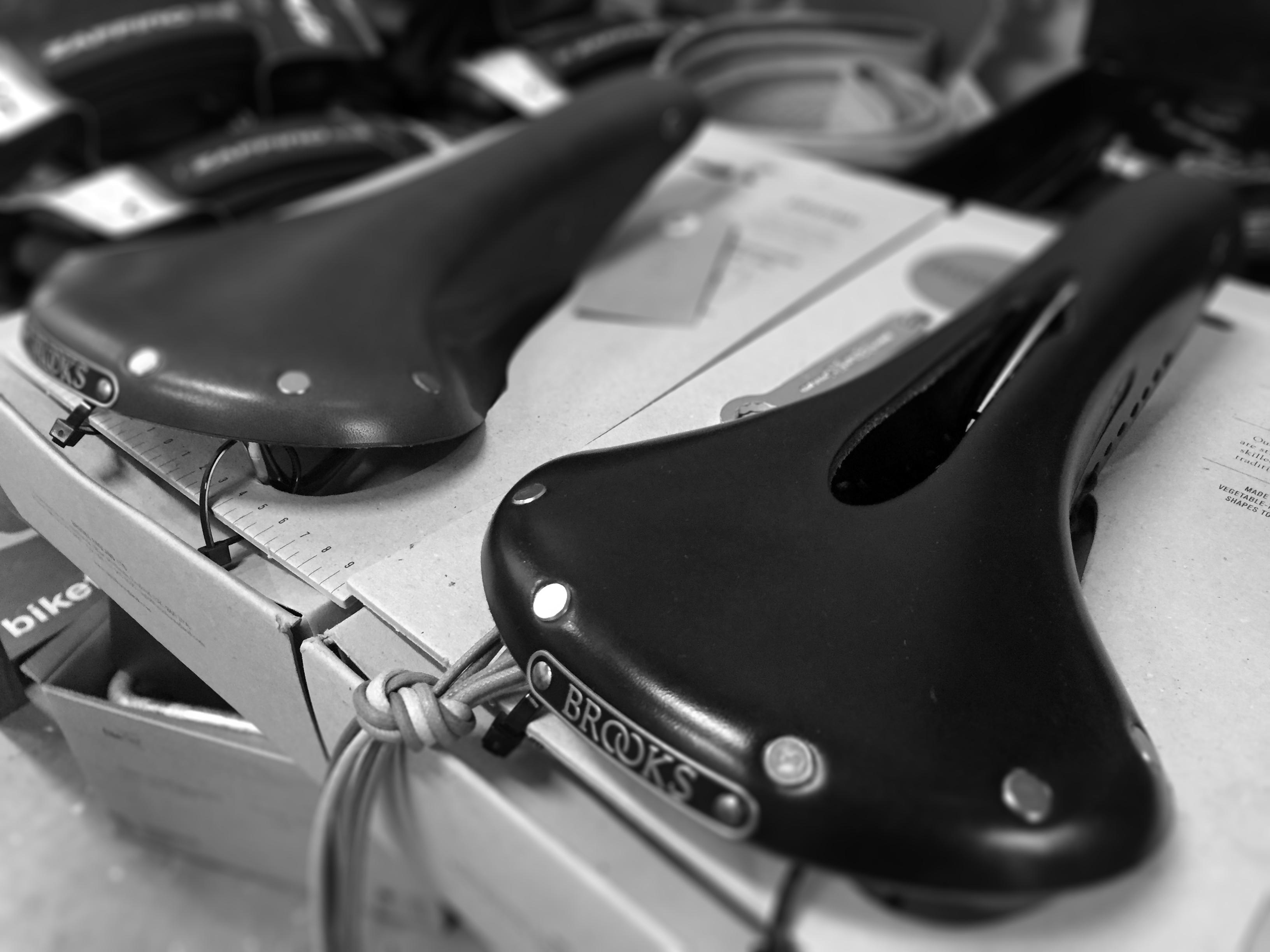 saddles b&w