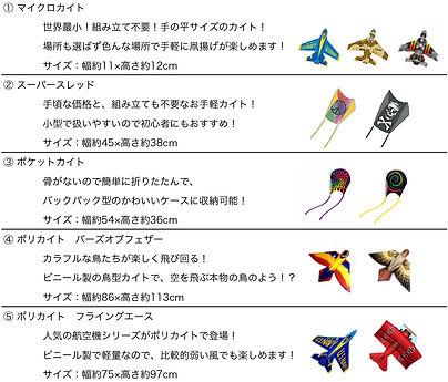 X-KITES提案_2021_900x1800_売れ筋_feelings様-18