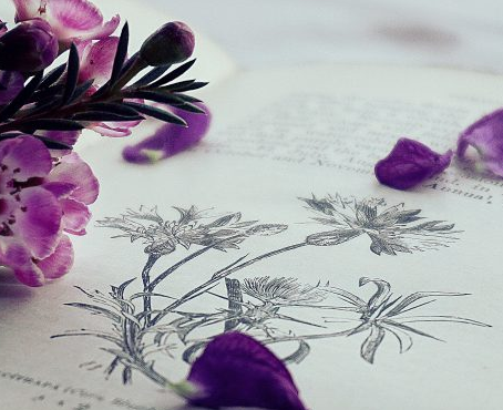 Interview : Thérèse du blog Femme à part