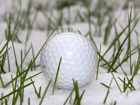 United Way's Winter Golf Tradition Helps ALICE