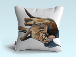 pillow chatzoom2