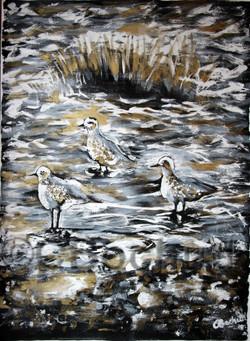 bird seashore gold ink