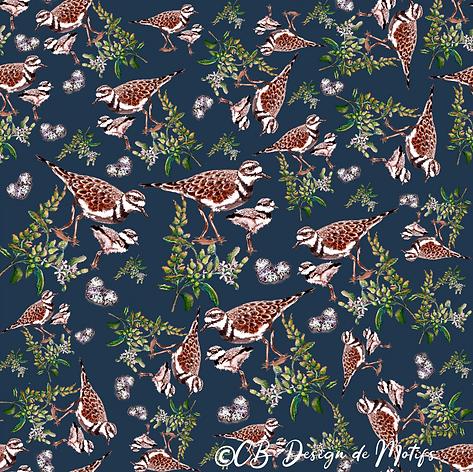 Pattern Pluvier Kildir.png