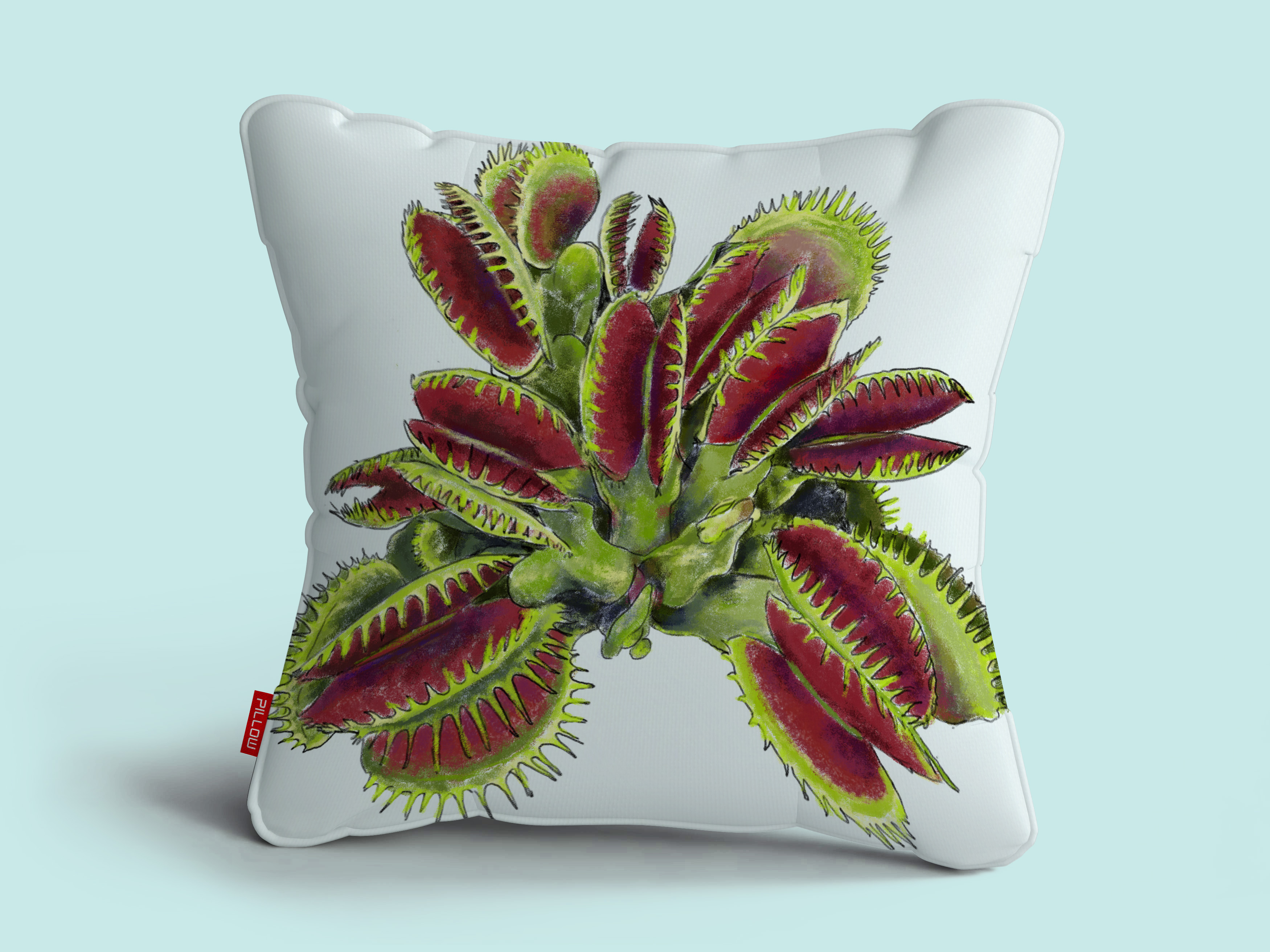 carnivorous plant2