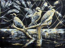 Cormorans à aigrette- Cormorant