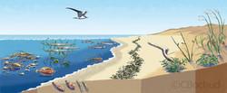La plage sablonneuse, sandy beach