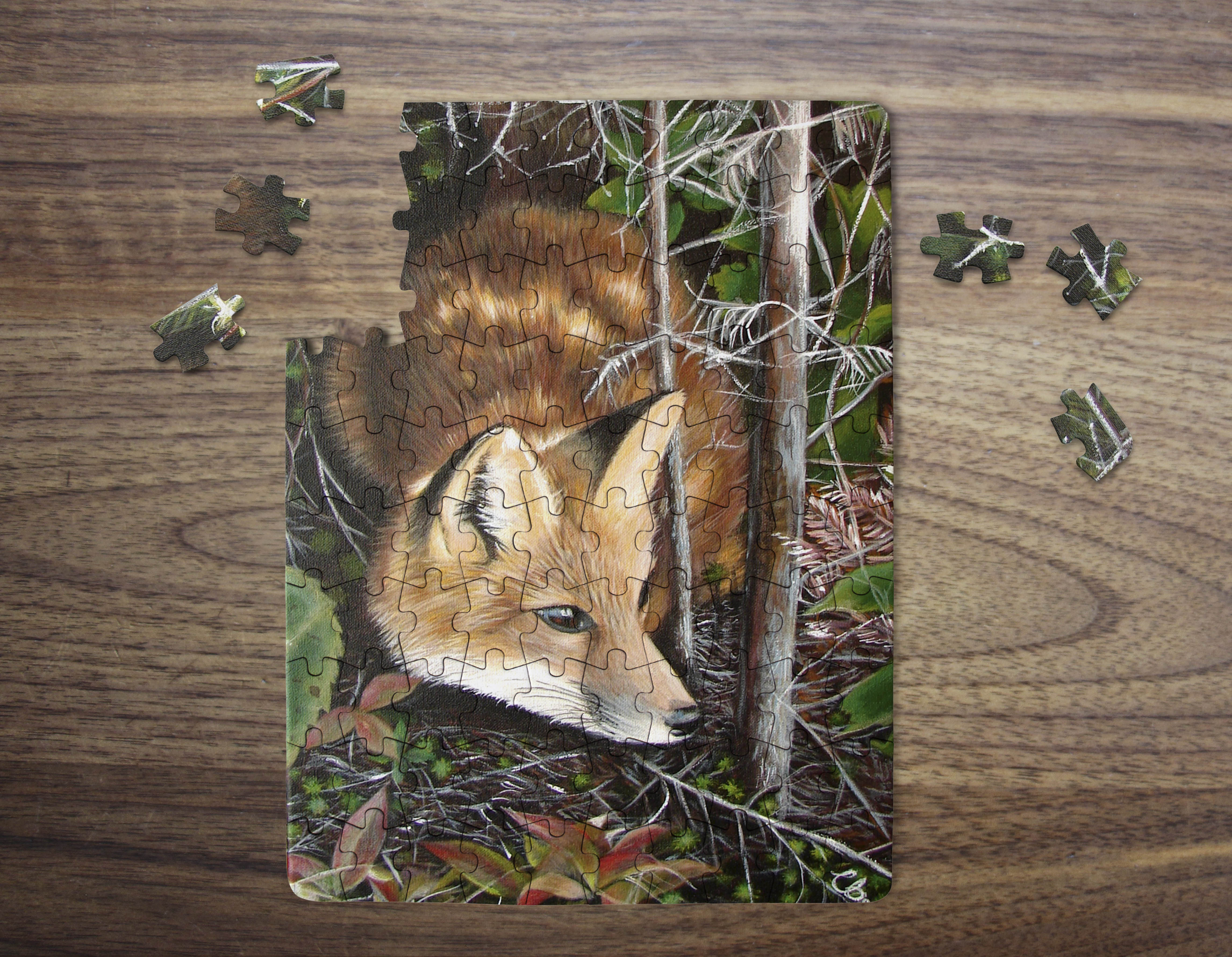 renard puzzple