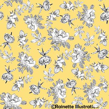 rosier sauvage_fond jaune.png