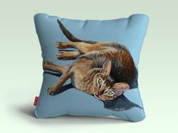 pillow chatzoom