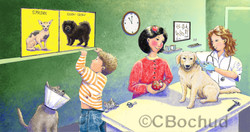 Vétérinaire, chien, veterinarian