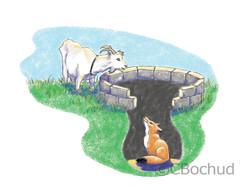 renard chèvre fox goat well puits