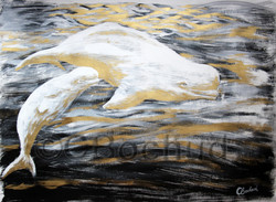 beluga whale gouache ink