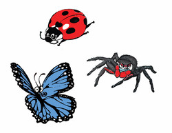 insectes personnages