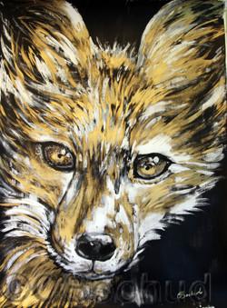 Fox- Renard