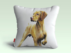 pillow chienzoom
