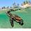 Thumbnail: Wear a Turtle, Save a Turtle - Disco Clay