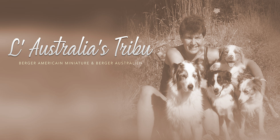 L'Australia's Tribu