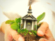 CHURCH IN HAND WITH PLANT.jpg