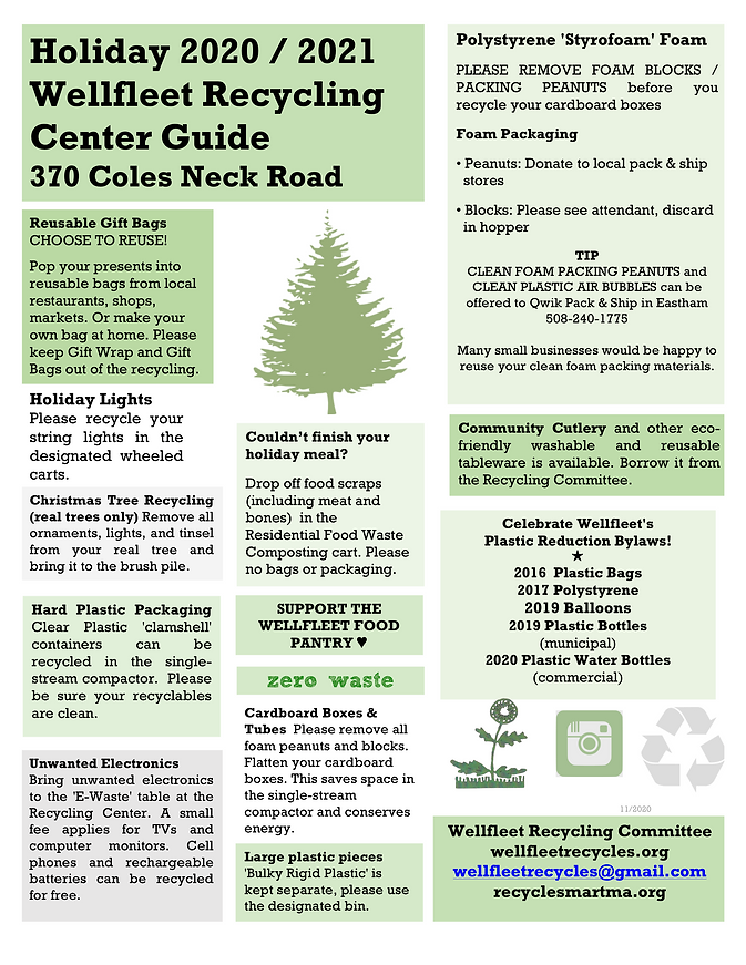 Holiday Recycling Guide 2020 .png