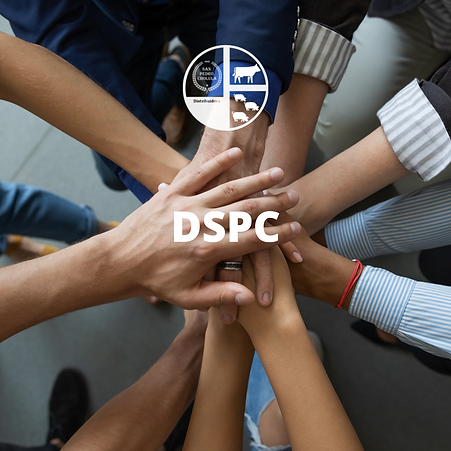 DSPC.png