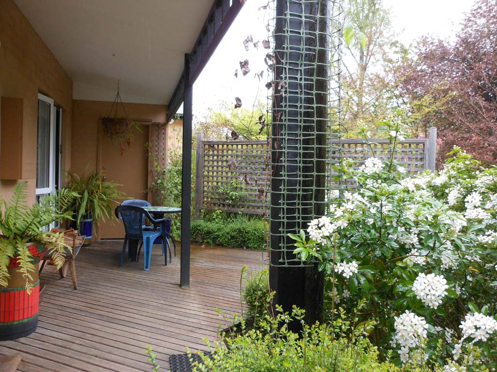 Another view of the decking