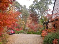 Car park in Autumn