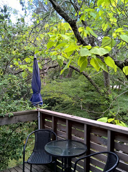 Private deck in the trees