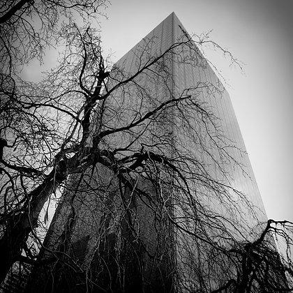 la tour enlacée