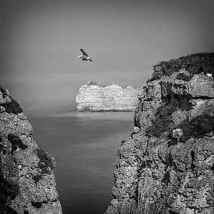 vol au dessus des falaises