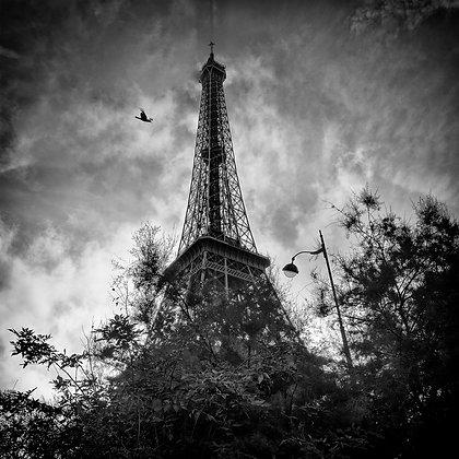 vision de la tour Eiffel