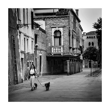 promenade avec les chiens