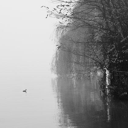 lac brume 7