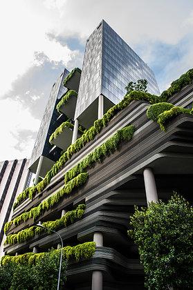 singapour 1 (Singapour)