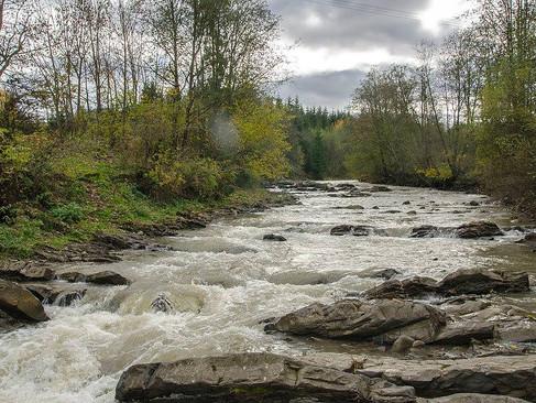 A legmagyarabb folyó is Kárpátalján ered